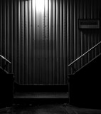 film_noir_offerings