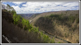 Pine Creek Gorge at Leonard Harrison State Park