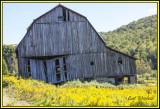 Rt 6 barn