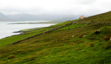 On the Dingle Peninsula