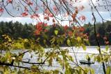 fall148.jpg