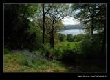 Stagshaw Garden #04, Ambleside