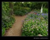 Poppy Garden #1, Hidcote Manor