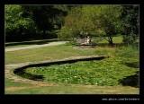 Washington Park Arboretum #06, Seattle, WA