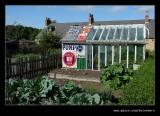 Pit Cottage Garden #8, Beamish Living Musem