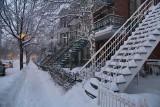 Les escaliers de Montréal/Stairways of Montréal P.Brunet