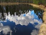 Birgitta Trail Pond