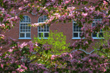 Spring has arrived, Tampere