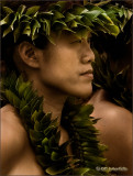 Kauaheahe