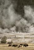 Yellowstone Landscapes: Weird, Mystical, Wonderful