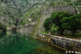 Kotor city walls DSC_6801