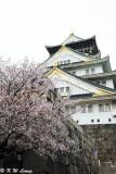 Osaka Castle DSC_2611