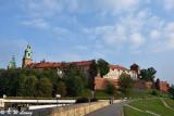 Wawel Castle DSC_9085