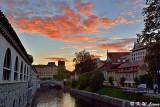 Ljubljanica River DSC_7415