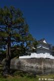 Nijo Castle DSC_0669