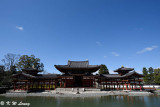 Byodoin Temple DSC_0365