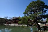 Byodoin Temple DSC_0360