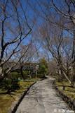 The Tale of Genji Museum DSC_0442