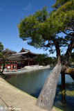 Byodoin Temple DSC_0373