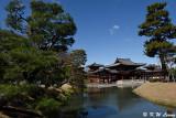 Byodoin Temple DSC_0369