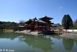 Byodoin Temple DSC_0359