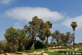 Abrasha Park DSC_4296