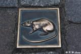 Rat tiles on the ground DSC_1574