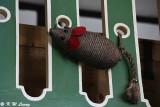 Rat decoration DSC_1560
