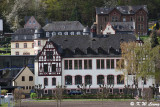 Rhine river bank DSC_1405