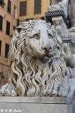 Lion scupture @ San Lorenzo Cathedral DSC_7558