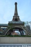 Parisian DSC_8000