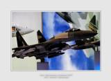 Salon Aeronautique du Bourget 2013 - 16