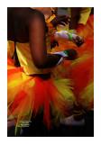 Carnaval Tropical de Paris 2013 - 56