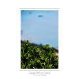 Summer 2013 in Corsica - 13