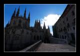 Burgos 11