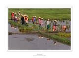 Myanmar 38