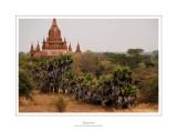 Myanmar 187