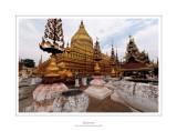 Myanmar 311