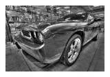 Cars BW HDR 38