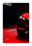 Mondial de l'Automobile 8