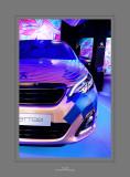 Peugeot Show Room  2