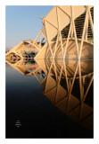 Valencia - Ciudad de las artes y las ciencias 8