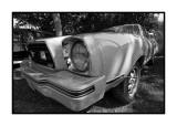 Ford Mustang, Bernay