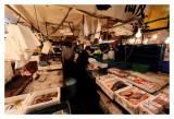 Tsukiji Fish Market - Tokyo 9