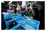 Tsukiji Fish Market - Tokyo 28
