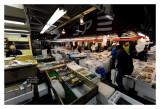 Tsukiji Fish Market - Tokyo 41