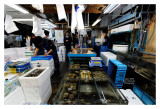 Tsukiji Fish Market - Tokyo 45