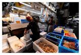 Tsukiji Fish Market - Tokyo 49