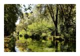 Canal de Garonne 17