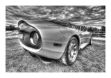 Cars BW HDR 94